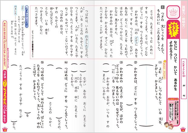 国語算数発展ワーク14年生 オプション教材 進研ゼミ小学